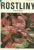 Frits W. Went: Rostliny