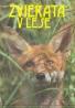 Milan Labuda, Jindro Vlach : Zvieratá v lese