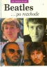 David Bennahum: Beatles po rozchode