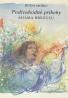 Rudo Moric: Podivuhodné príbehy Adama Brezuľu