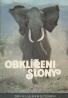 Iain Douglas-Hamilton, Oria Douglas-Hamilton: Obklíčeni slony