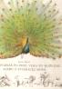Karol Hensel: Vtáka poznáš po perí, vlka po kožuchu, alebo o zvieracej móde