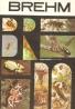 Alfréd Edmund Brehm: ŽIvot zvierat 1 - Bezstavovce