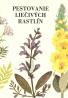 Kolektív autorov: Pestovanie liečivých rastlín