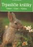 Michael Mettler: Trpasličie králiky: Výber, chov, výživa