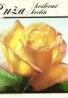 Kolektív autorov: Ruža - kráľovná kvetín