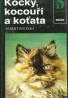 Albert Pintera: Kočky, kocouři a koťata