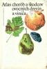 Kolektív autorov: Atlas chorôb a škodcov ovocných drevín a viniča