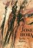 Josef Hora: Alexander Dumas