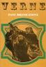 Jules Verne: Pani Branicanová