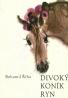 Bohumil Říha: Divoký koník Ryn