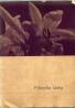 Dr.Fr.Sawicki-Filozofia lásky