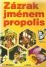 G.Z.Minedžajan-Zázrak jménem propolis