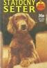 Jenny Dale: Psia hliadka - Statočný seter