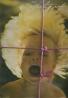 kolektív- Revue fografie 1985