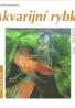 Ines Scheurmannová- Akvarijní rybky
