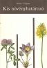 Csapody- Kis növényhatározo