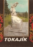 Ivan Mindoš- Tokajík