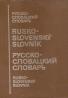 kolektív- Rusko- Slovenský slovník