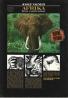 J. Vágner- Afrika život a smrt zvířat