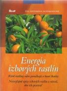 Eva-Katharina Hoffmannová-Energia izbových rastlín