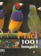 kolektív- Ptáci 1001 fotografií